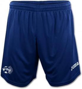 BFS Shorts Men 2013